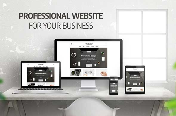 Importance of Creating a Professional Website For Your Business